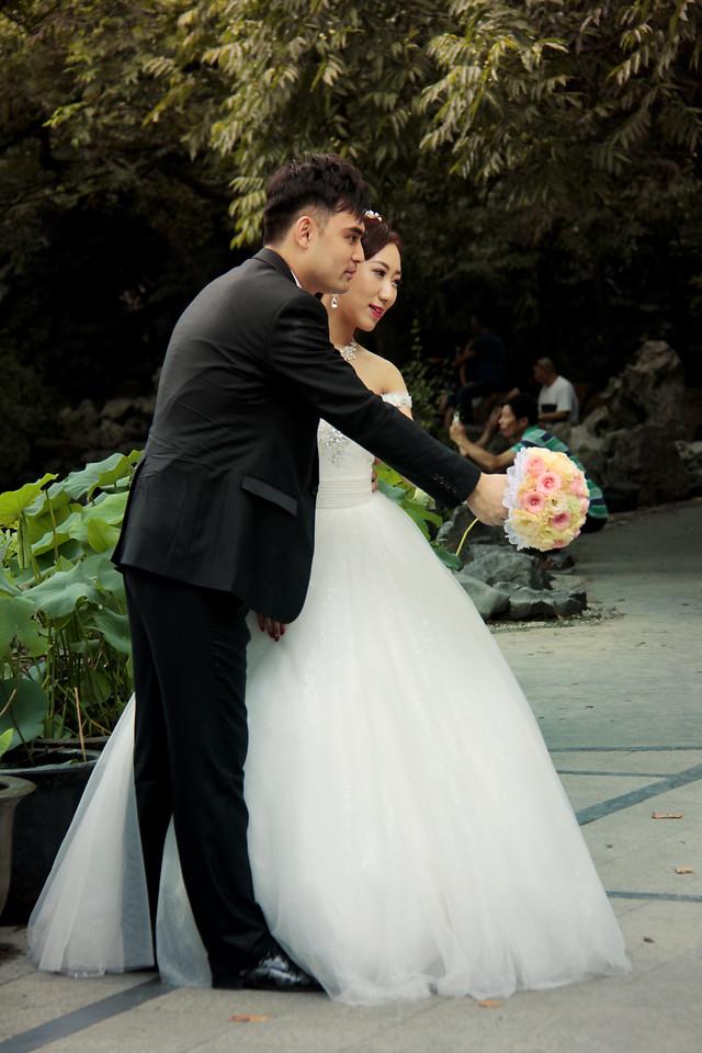 wedding-groom-bride-veil-woman picture material