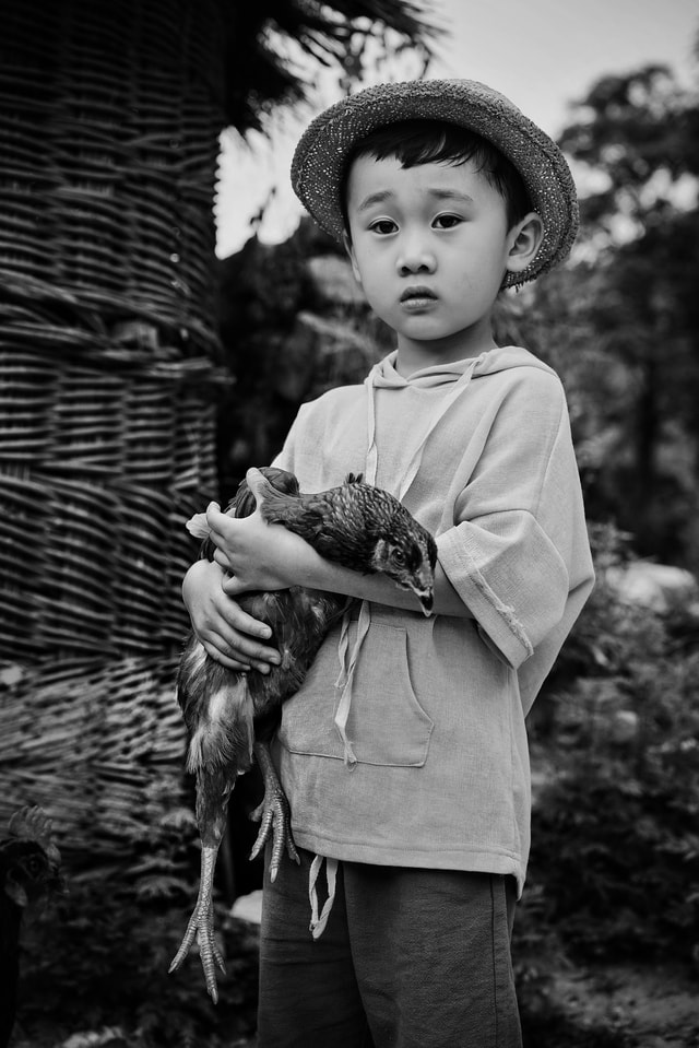 my-boy-this-kid-photograph-child-standing-photography picture material