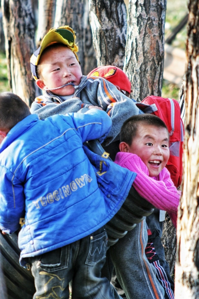 people-child-tree-community-play picture material