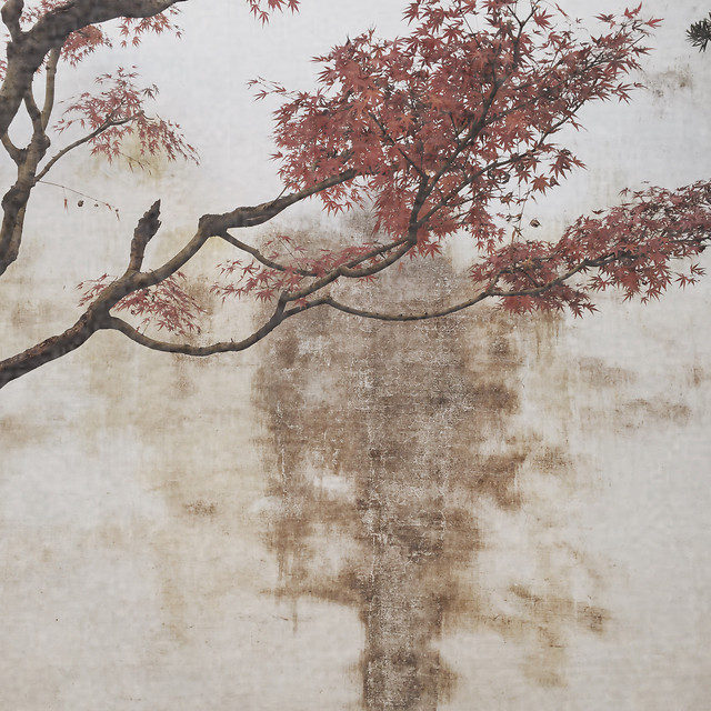 tree-branch-season-desktop-leaf 图片素材