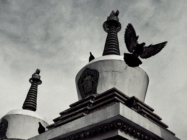 no-person-architecture-landmark-travel-black-white picture material
