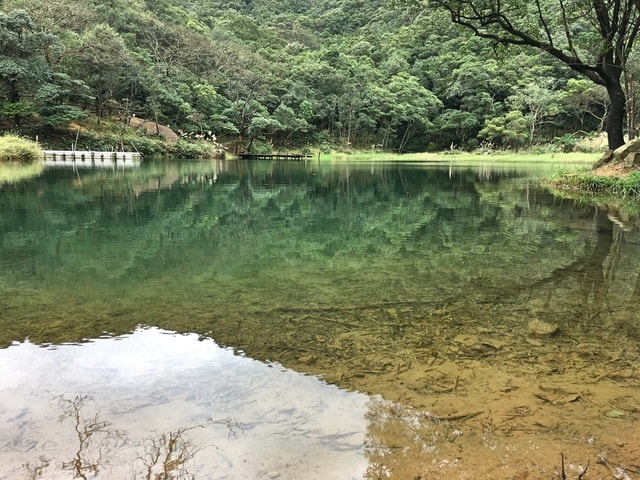 spring-travel-water-resources-body-of-water-natural-landscape 图片素材