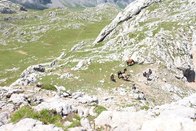 zhaina-mountain-mountainous-landforms-geological-phenomenon-mountain-range 图片素材