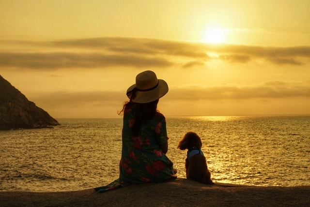 people-in-nature-sky-horizon-sea-sunset picture material