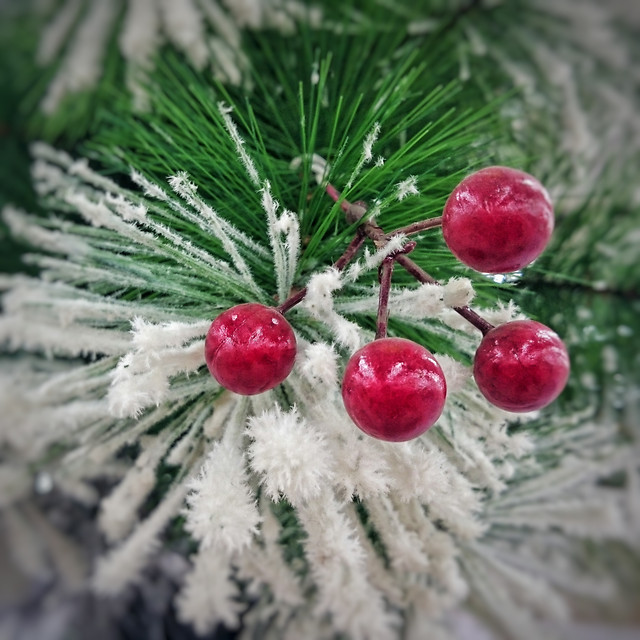 christmas-winter-pine-tree-decoration 图片素材