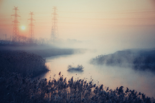 fog-landscape-dawn-sunset-mist picture material