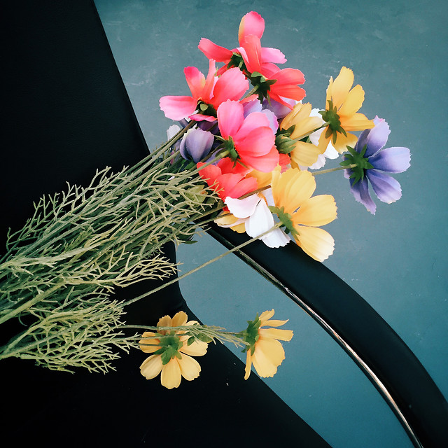 flower-bouquet-flora-gift-floral picture material
