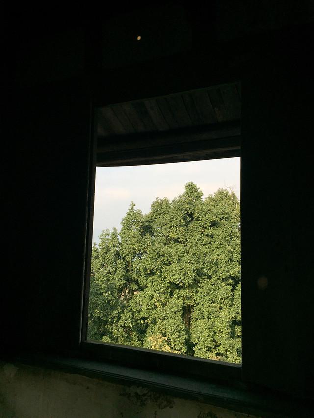 window-no-person-green-light-architecture picture material