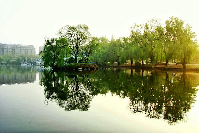 water-reflection-lake-tree-nature 图片素材
