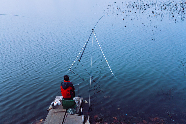 water-fisherman-fish-recreation-fishing-rod picture material