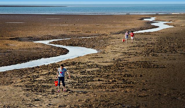 beach-sand-water-no-person-seashore 图片素材