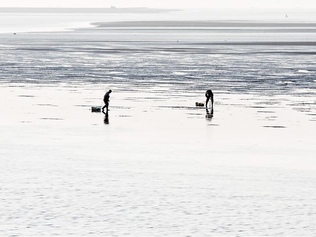 water-beach-sea-ocean-fisherman picture material