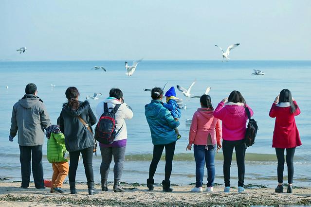 beach-sea-child-people-ocean 图片素材