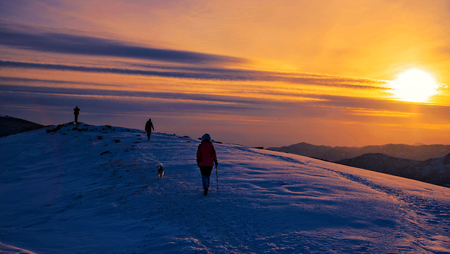 sunset-snow-winter-dawn-evening picture material