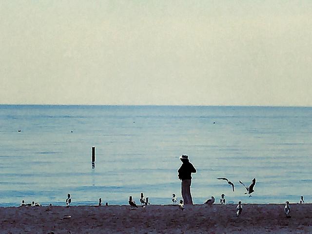 beach-water-sea-ocean-seashore picture material