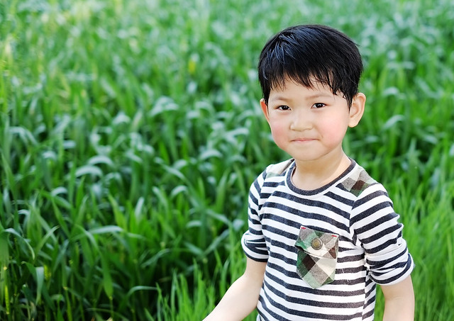 child-grass-nature-summer-field 图片素材