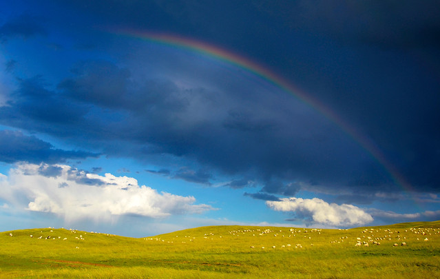 rainbow-no-person-landscape-sky-grassland picture material