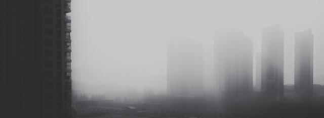 fog-mist-landscape-black-black-white picture material