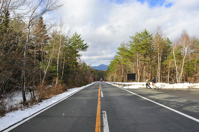 road-guidance-asphalt-landscape-tree picture material