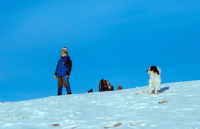 snow-winter-recreation-people-outdoors picture material