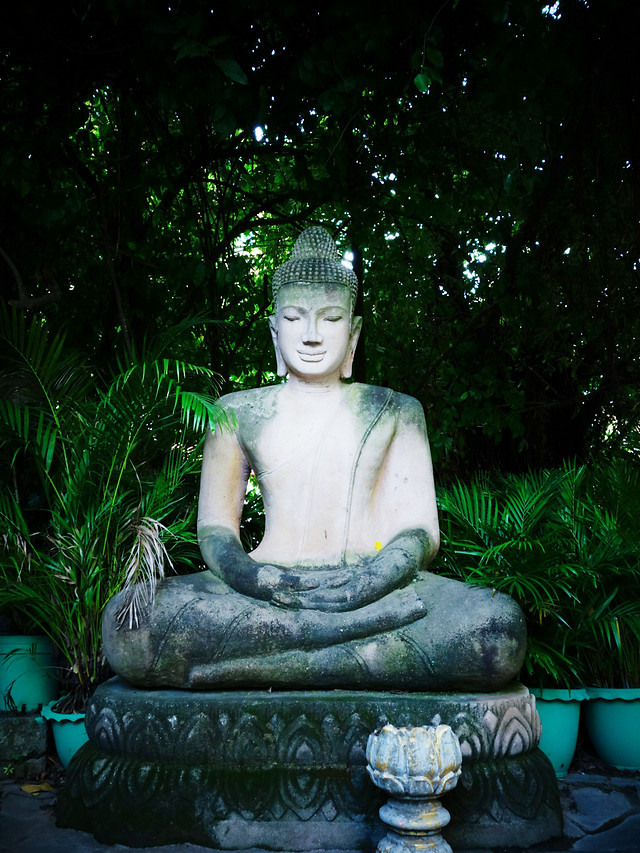 statue-sculpture-temple-art-buddha picture material