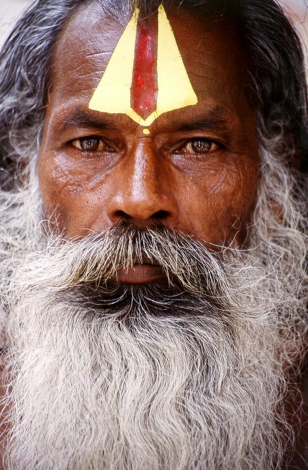 moustache-character-texture-portrait-focus picture material