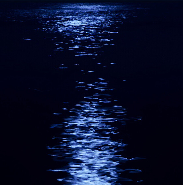 dark-no-person-moon-reflection-water picture material