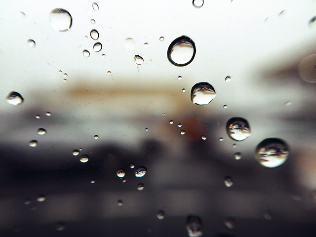 rain-wet-droplet-dew picture material