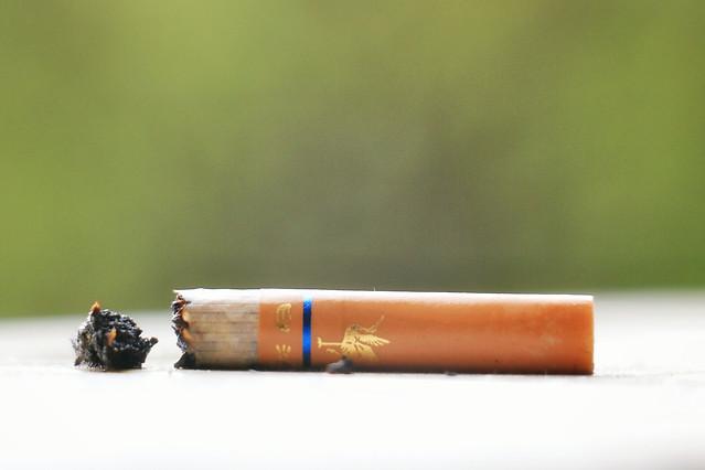 no-person-tobacco-stub-blur-still-life picture material