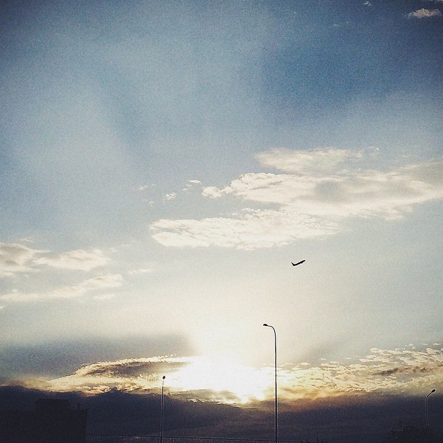 landscape-sunset-sky-light-storm picture material