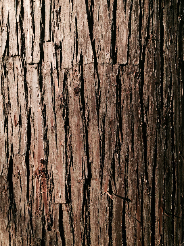wood-texture-desktop-log-fabric picture material