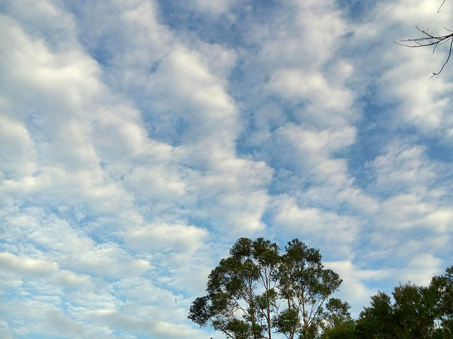 nature-sky-cloud-landscape-weather picture material