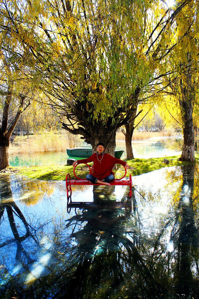 tree-reflection-fall-wood-water 图片素材