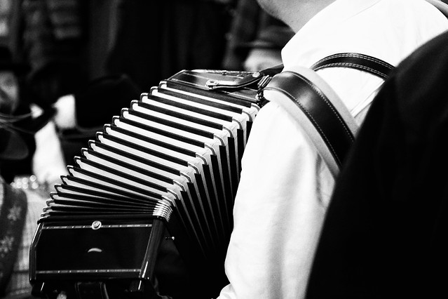 people-monochrome-accordionist-man-black picture material