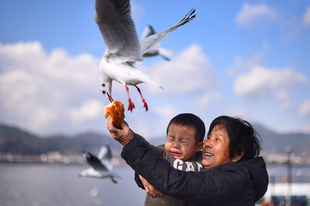 bird-people-outdoors-water-sky picture material