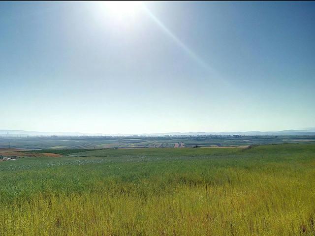 landscape-grassland-no-person-cropland-sky picture material