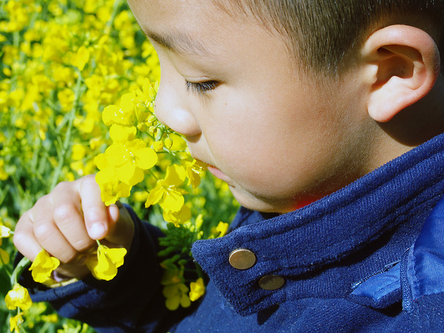 child-little-fun-cute-yellow 图片素材