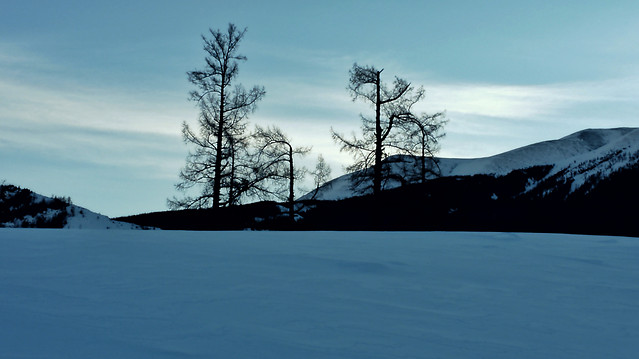snow-landscape-winter-tree-mountain picture material