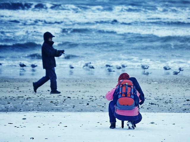 beach-sea-ocean-people-water 图片素材