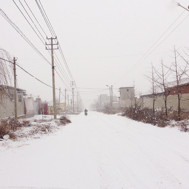 winter-snow-wire-cold-weather 图片素材