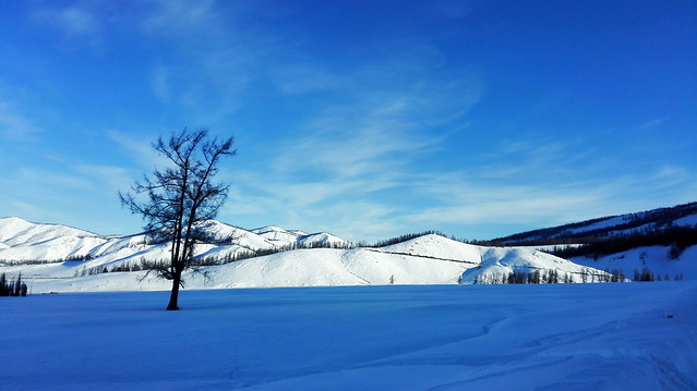 snow-winter-ice-cold-landscape picture material