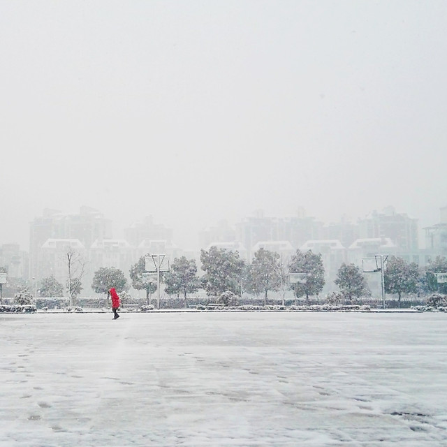 winter-fog-snow-weather-people picture material