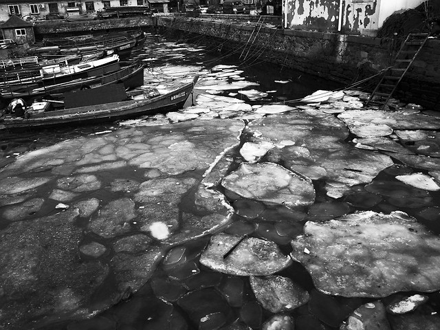 no-person-water-reflection-river-black-white 图片素材