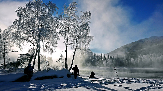 snow-winter-landscape-cold-fog picture material