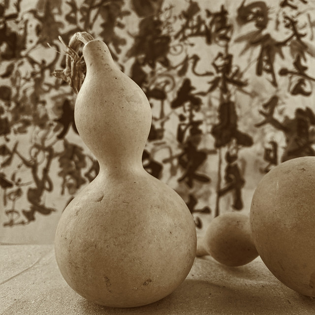 no-person-food-fall-still-life-pear picture material