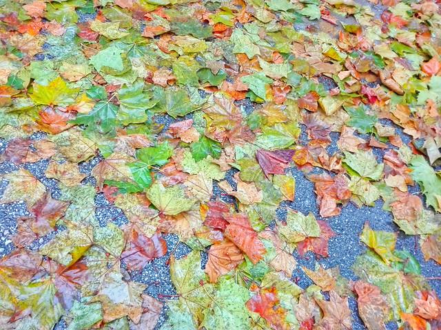 desktop-art-texture-color-pattern picture material