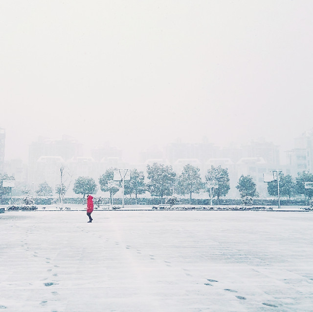 winter-fog-people-snow-mist 图片素材