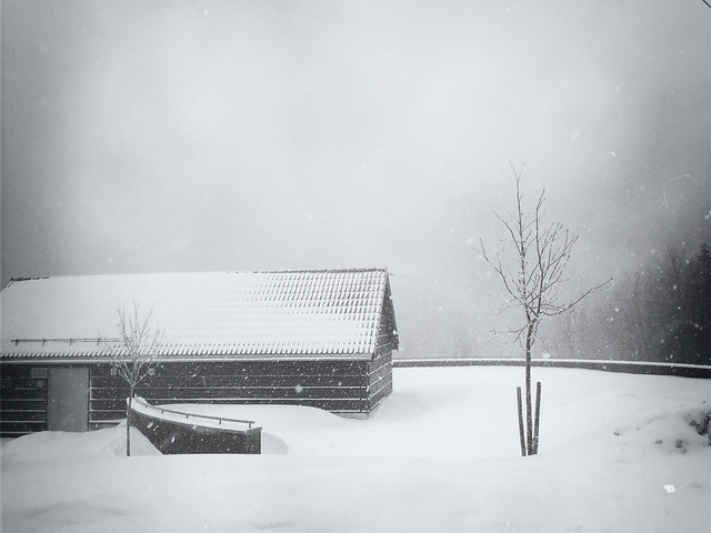 winter-snow-no-person-monochrome-people picture material