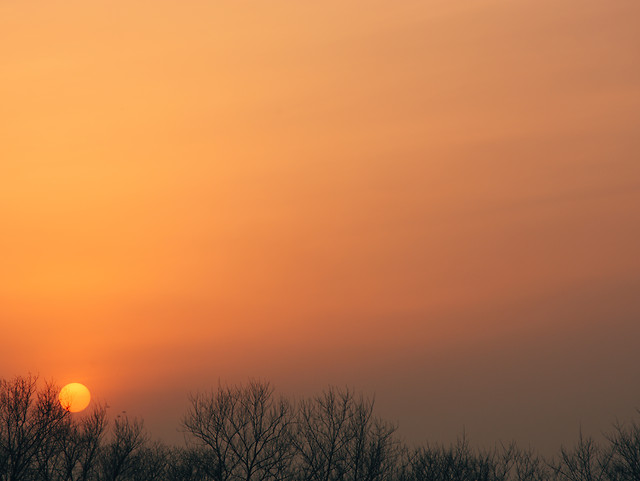 sunset-dawn-fog-sun-evening 图片素材