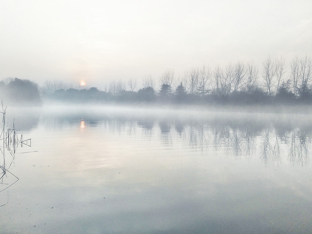 fog-landscape-mist-lake-water picture material